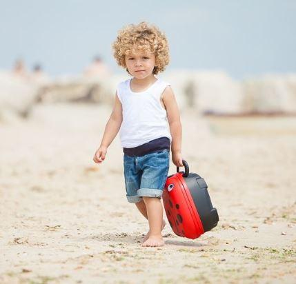 child carrying  ladybird portable potty