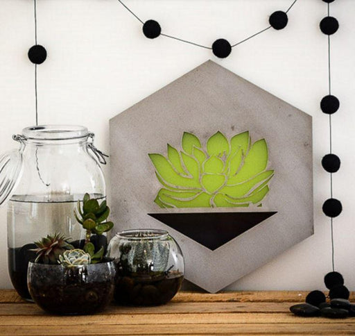 Hexagon steel sign with a green succulent motif