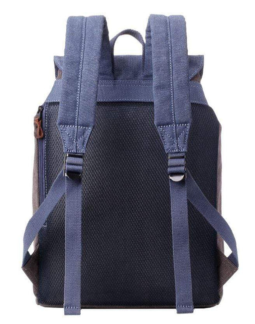 Blue and grey backpack rear view.