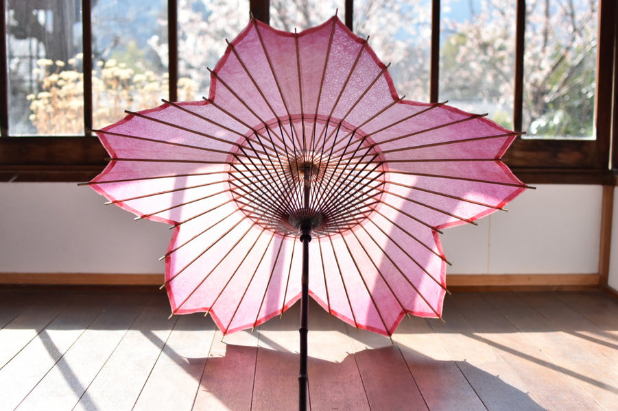 Sakura-Japanese umbrella will be on sale from April 1, 2019 (Monday)!