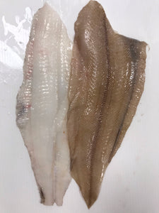 Torbay Sole (witch) x500g