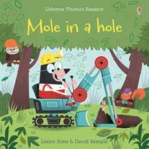 Mole in the Hole (Usborne Phonics Readers)