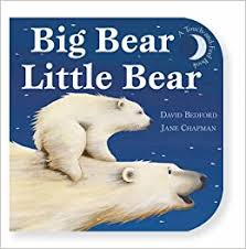 Big Bear Little Bear (Hardcover)