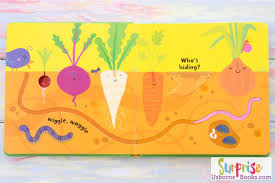 Usborne baby's very first Fingertrail Playbook : Garden (Boardbook)