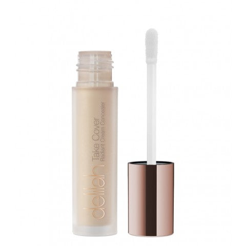 Delilah Take Cover Concealer