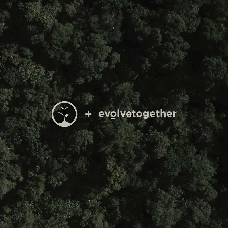 one tree planted and evolvetogether