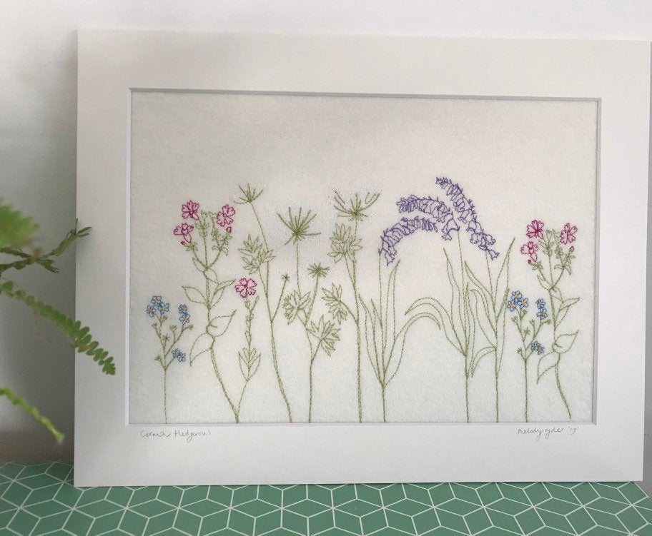 Cornish Hedgerow Picture