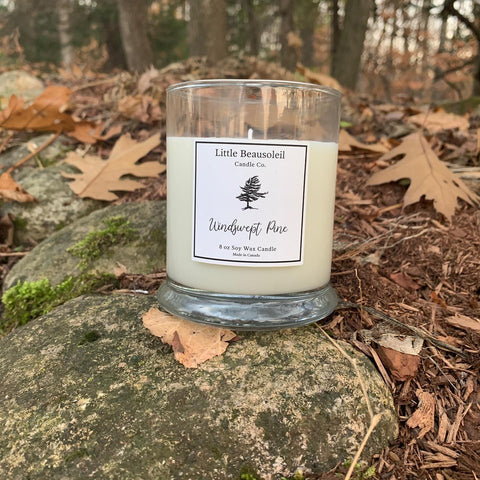 Candles - Soy - Windswept Pine