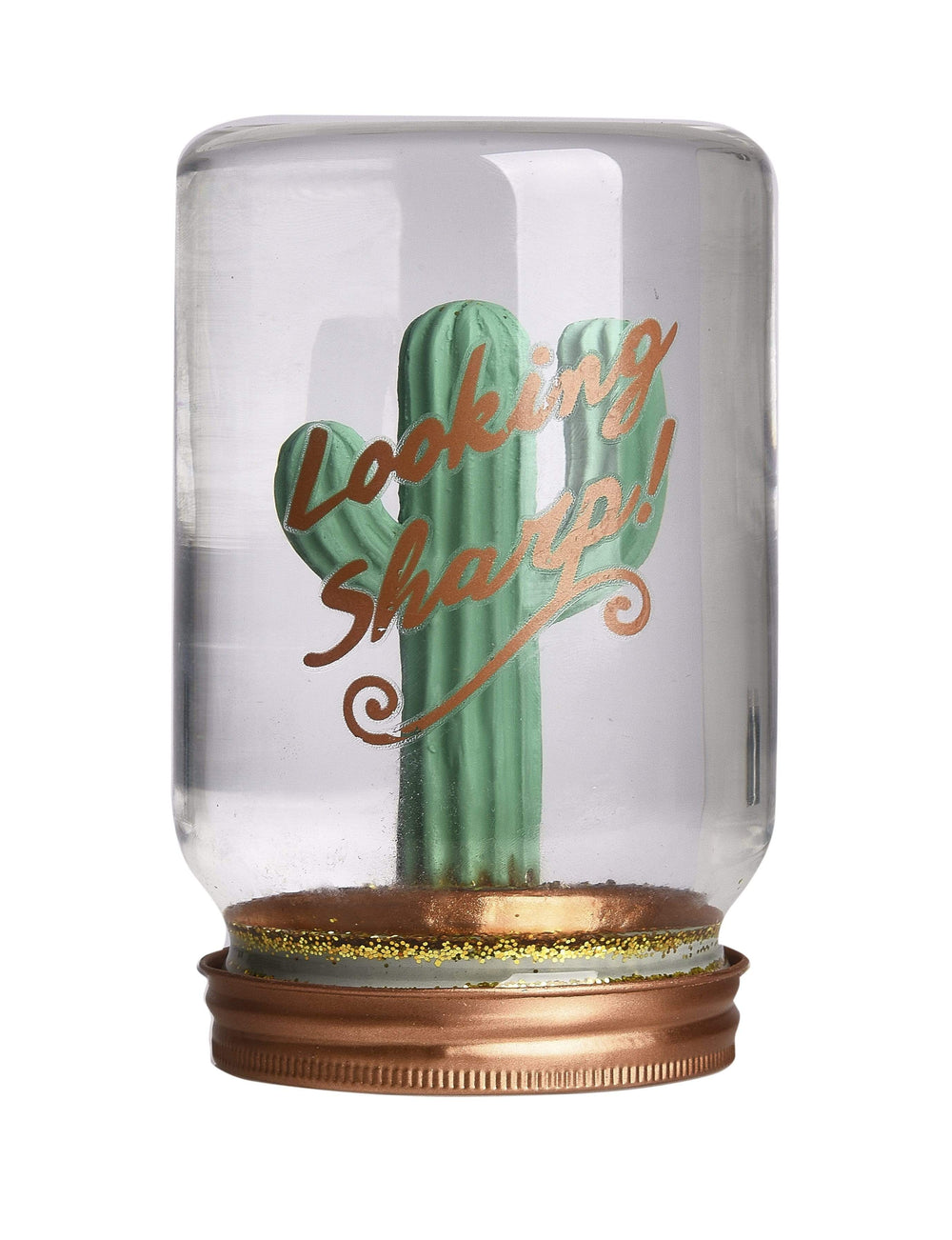 Pusher Store JAR SNOWGLOBE Cactus