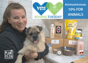 #United4Animals Giving Tuesday Fundraising Challenge