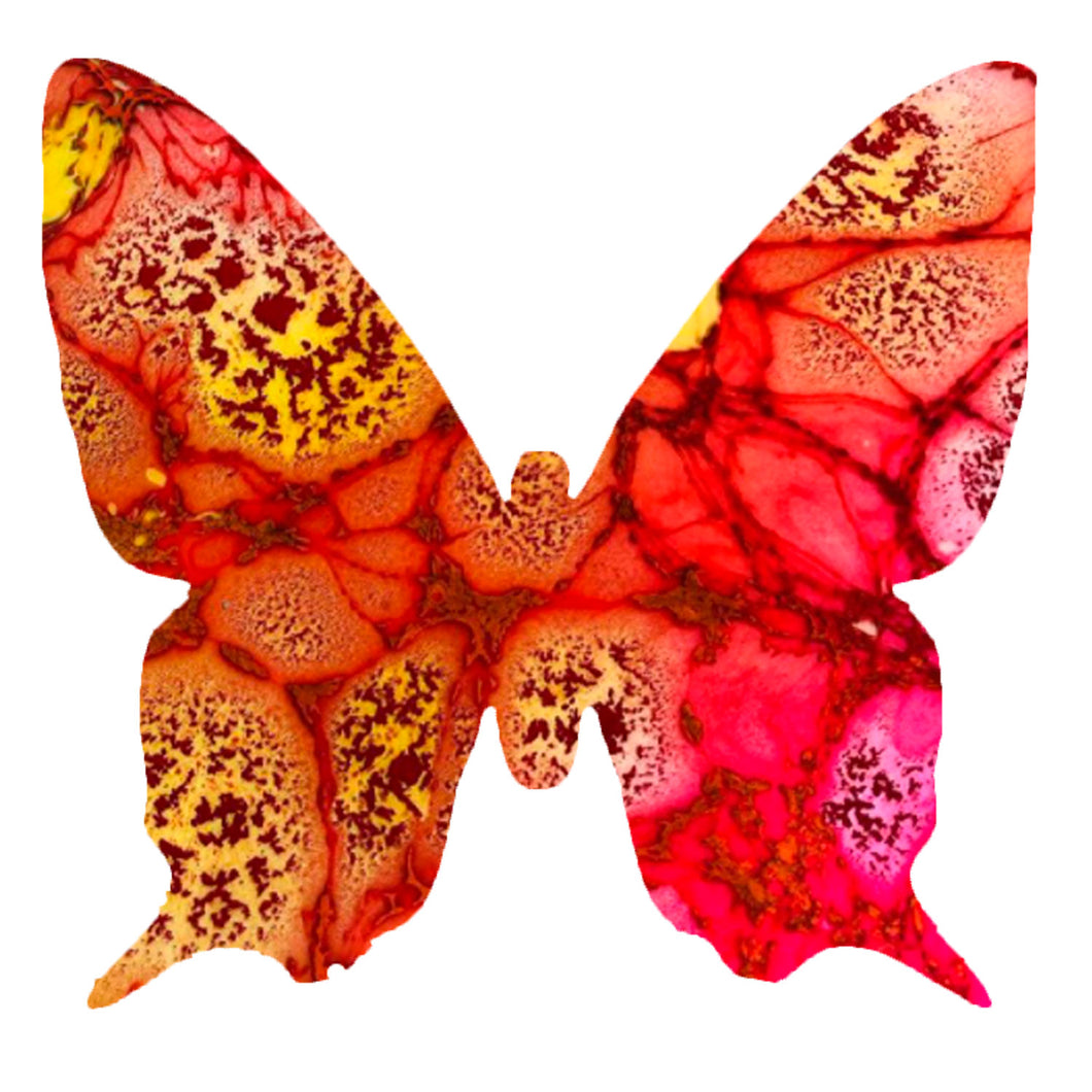 Large STARBURST Butterfly