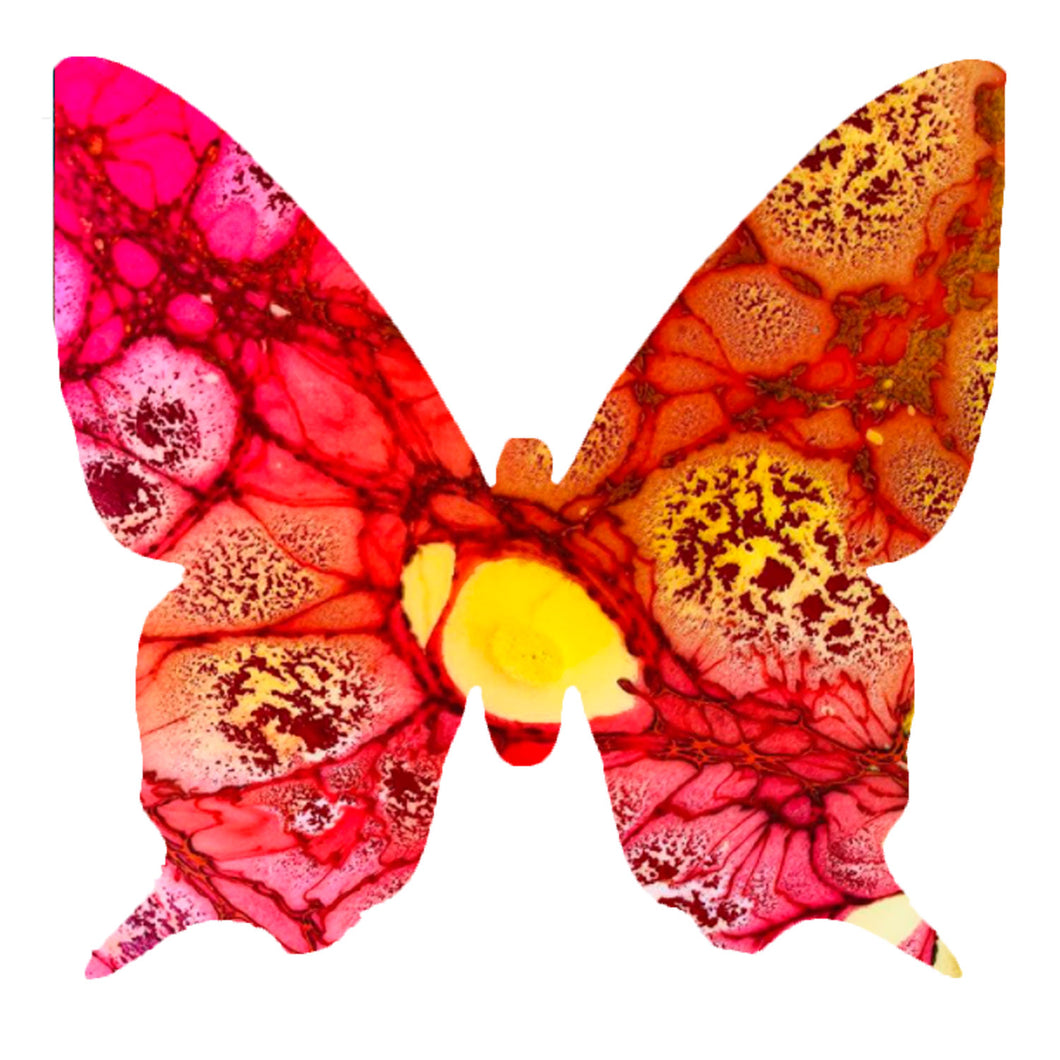 Medium STARBURST Butterfly