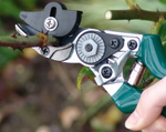 Load image into Gallery viewer, RHS Rose Pruner