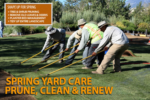 SPRING YARD CARE PRUNE, CLEAN & RENEW