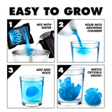 Blue Crystal Growing Kit