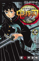 Demon Slayer: Kimetsu no Yaiba 鬼滅の刃 Volume.12
