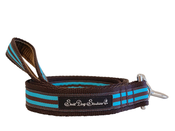 Aqua and Brown Stripe Dog Lead ©