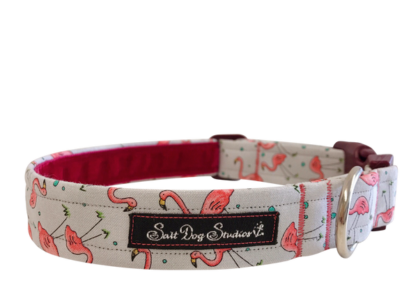 Flamboyance Dog Collar ©