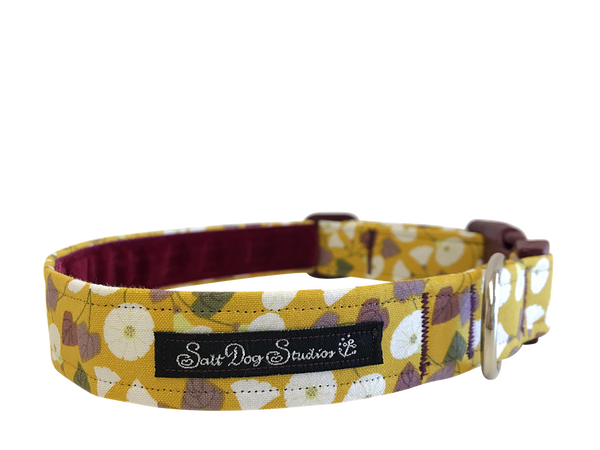 Granny-Pop-Out-Of-Bed Dog Collar ©