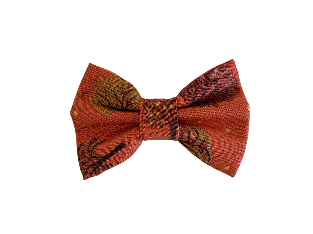 Amber Fall Bow Tie ©