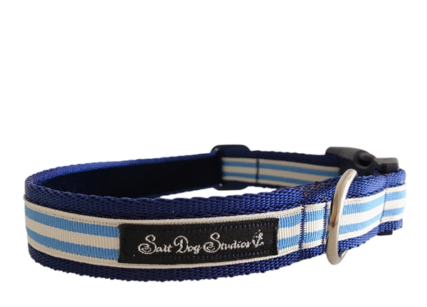 Light Blue Stripe Dog Collar ©
