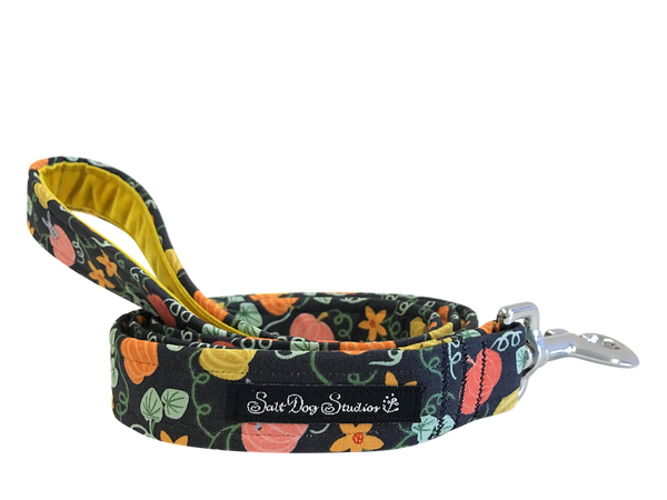 Pumpkin Patch Dog Lead ©