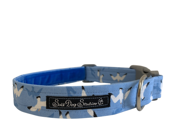 Sea Gliding Dog Collar ©
