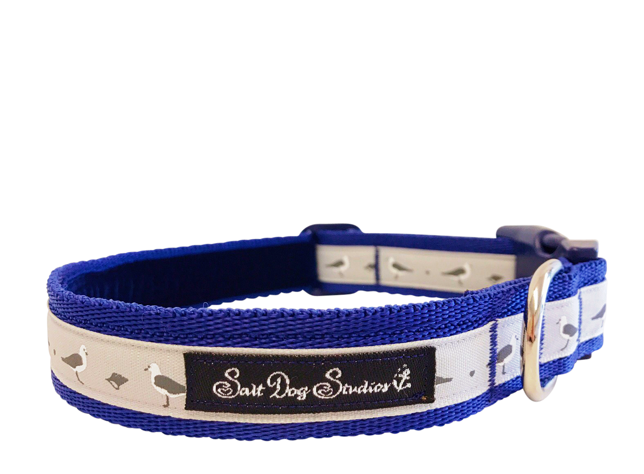 Seagulls Dog Collar ©