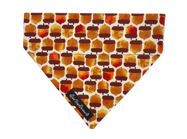 Squirrels Treasure Autumn Dog Bandana ©