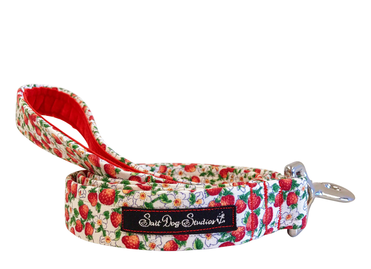 Strawberry Fields Dog Lead ©