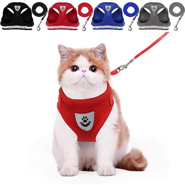 FIZO™ Cat Harness & Leash Set ( 2 PCS ) | Ship from USA | Buy 2 Get FREE SHIPPING - Fizo™ - # Best Designer Products Enlighting Your Life
