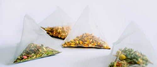 Clover biodegradable compostable tea sachets close-up on white background