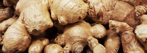 Ginger root close up