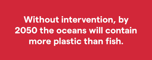 Without intervention, by 2050 the oceans will contain more plastic than fish.