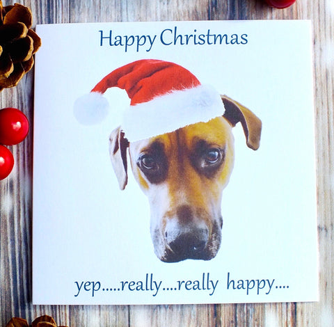Grumpy Dog in Santa Hat - Pack of 4 Christmas Cards