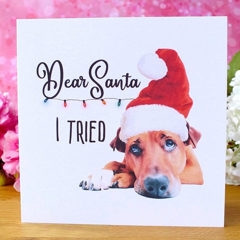 Funny Dog Christmas Cards - Pack of 4 - 'I Tried'