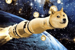 "Doge in a space ship to the moon Dogecoin 5"" sticker - All Out Canvas"
