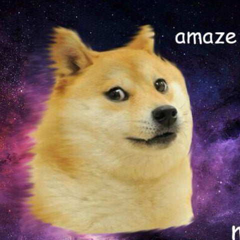 "Doge in the galaxy AMAZE Dogecoin 5"" sticker - All Out Canvas"