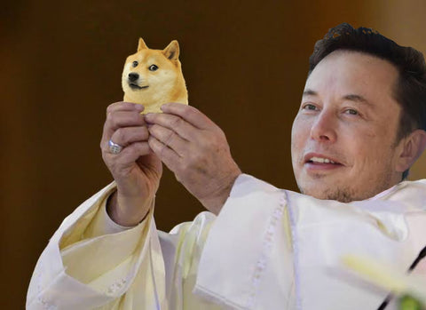 "Elon Musk holding baby Doge Dogecoin 5"" sticker - All Out Canvas"