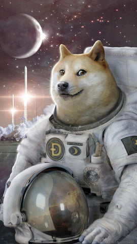 "Doge Astronaut to the moon Dogecoin 5"" sticker - All Out Canvas"