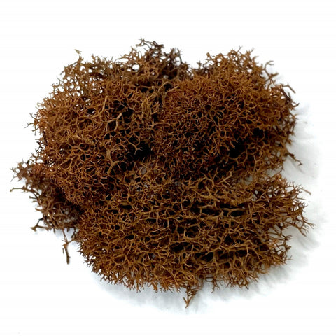 Brown Reindeer Moss, Bagged 1 Oz