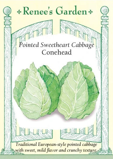 Cabbage Pointed Sweetheart Conehead Seeds
