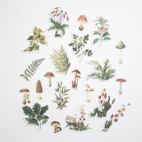 Botanical Stickers Volume 3: Forest Floor