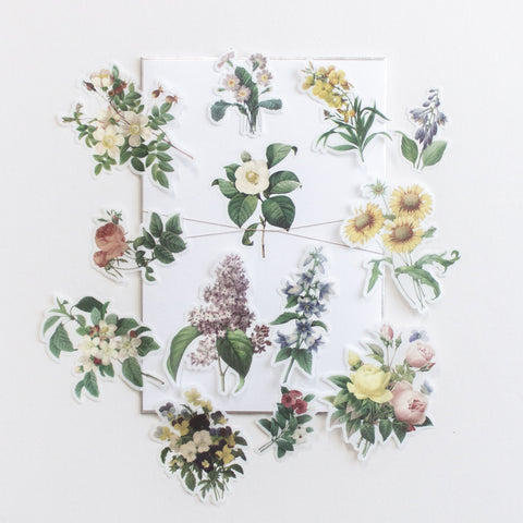 Botanical Stickers Volume 1: Wild Flowers