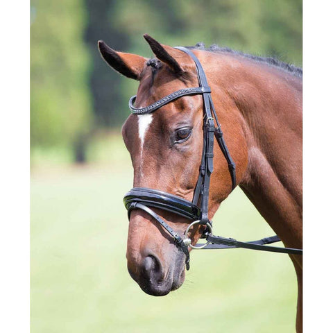 Shires Vegas Black Dressage Bridle