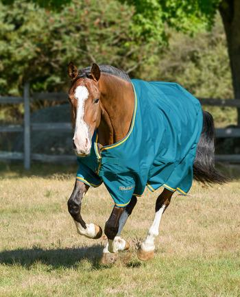 Shires Tempest Plus Rainsheet