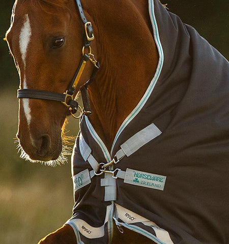 Horseware Amigo Bravo 12 Wug Turnout - medium 250g