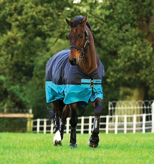 Horseware Mio Turnout (200g Medium) - Black/Turquoise