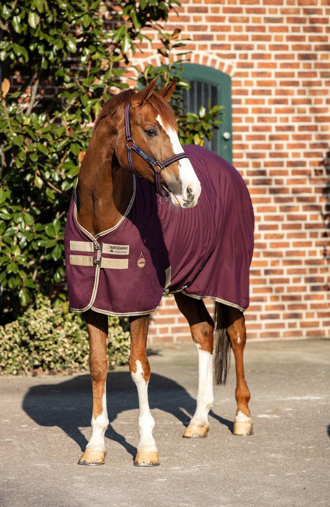 Horseware Amigo Stable Sheet - Fig with Navy and Tan