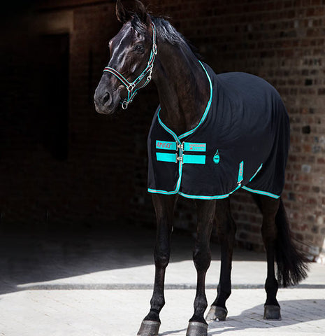 Horseware Amigo Stable Sheet Black and Teal